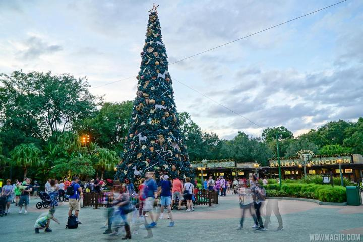 Holidays-at-Disneys-Animal-Kingdom_Full_25965